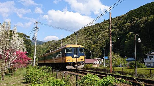 コテージのすぐ横を大井川鐵道が走っています